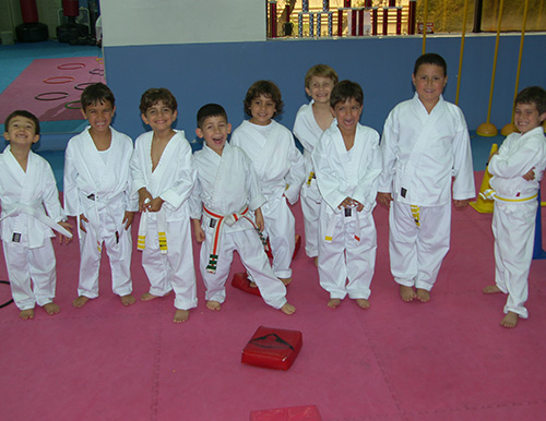 FMA miami karate little dragons